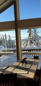 Fint på vinterfjellet