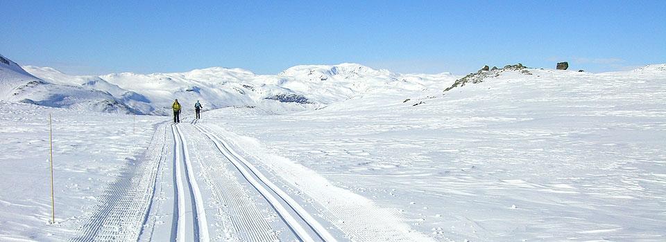 filefjell_skispor_960x350